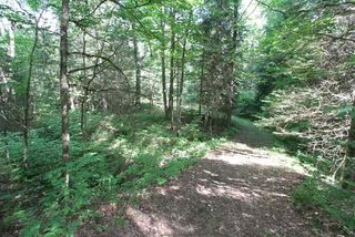 Photo 16: 300 Pinery Road in Kawartha Lakes: Rural Somerville Property for sale : MLS®# X4840235