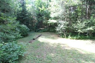 Photo 26: 300 Pinery Road in Kawartha Lakes: Rural Somerville Property for sale : MLS®# X4840235
