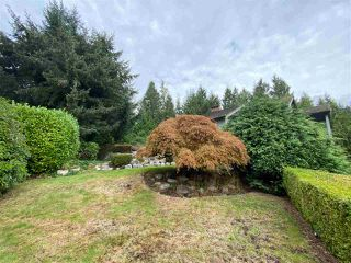 Photo 5: 4408 STONE Crescent in West Vancouver: Cypress House for sale : MLS®# R2497002