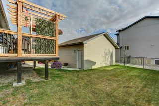 Photo 29: 541 Carriage Lane Drive: Carstairs Detached for sale : MLS®# A1039901