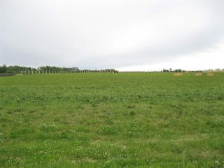 Photo 1: 6 52329 RGE RD 13: Rural Parkland County Rural Land/Vacant Lot for sale : MLS®# E4192970