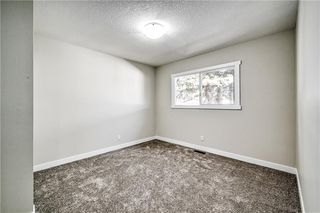 Photo 15: 4931 MARIAN Road NE in Calgary: Marlborough Detached for sale : MLS®# C4304951
