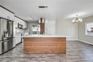 Photo 1: 4931 MARIAN Road NE in Calgary: Marlborough Detached for sale : MLS®# C4304951