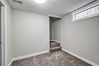 Photo 16: 4931 MARIAN Road NE in Calgary: Marlborough Detached for sale : MLS®# C4304951