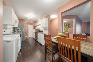 Photo 9: 401 22351 ST ANNE Avenue in Maple Ridge: West Central Condo for sale : MLS®# R2520663