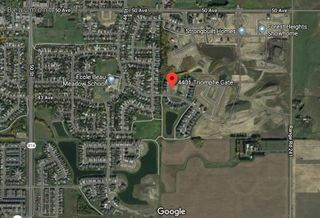 Photo 4: 4401 TRIOMPHE GATE: Beaumont Vacant Lot for sale : MLS®# E4182324