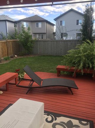 Photo 35: 1519 37C Avenue NW in Edmonton: Zone 30 House for sale : MLS®# E4185786