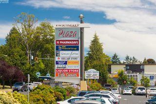 Photo 45: 481 Constance Ave in VICTORIA: Es Esquimalt Single Family Detached for sale (Esquimalt)  : MLS®# 823618