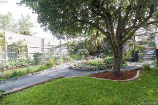 Photo 37: 481 Constance Ave in VICTORIA: Es Esquimalt Single Family Detached for sale (Esquimalt)  : MLS®# 823618
