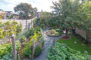 Photo 36: 481 Constance Ave in VICTORIA: Es Esquimalt Single Family Detached for sale (Esquimalt)  : MLS®# 823618