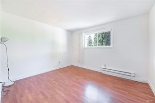Photo 9: 21077 COOK Avenue in Maple Ridge: Southwest Maple Ridge House for sale : MLS®# R2403883