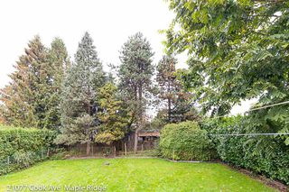 Photo 18: 21077 COOK Avenue in Maple Ridge: Southwest Maple Ridge House for sale : MLS®# R2403883