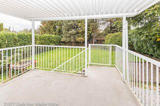Photo 17: 21077 COOK Avenue in Maple Ridge: Southwest Maple Ridge House for sale : MLS®# R2403883