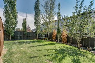 Photo 25: 19 COPPERLEAF Crescent SE in Calgary: Copperfield Detached for sale : MLS®# A1022410