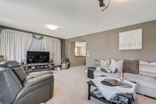 Photo 24: 19 COPPERLEAF Crescent SE in Calgary: Copperfield Detached for sale : MLS®# A1022410