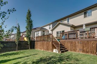 Photo 28: 19 COPPERLEAF Crescent SE in Calgary: Copperfield Detached for sale : MLS®# A1022410