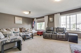Photo 22: 19 COPPERLEAF Crescent SE in Calgary: Copperfield Detached for sale : MLS®# A1022410