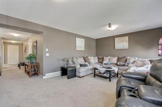 Photo 23: 19 COPPERLEAF Crescent SE in Calgary: Copperfield Detached for sale : MLS®# A1022410