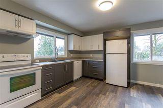 Photo 7: 20419 LORNE Avenue in Maple Ridge: Southwest Maple Ridge House for sale : MLS®# R2519805