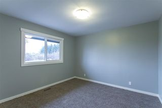 Photo 10: 20419 LORNE Avenue in Maple Ridge: Southwest Maple Ridge House for sale : MLS®# R2519805