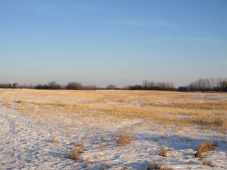 Photo 6: RR 214 Twp Rd 602: Rural Thorhild County Rural Land/Vacant Lot for sale : MLS®# E4224562