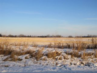 Photo 3: RR 214 Twp Rd 602: Rural Thorhild County Rural Land/Vacant Lot for sale : MLS®# E4224562
