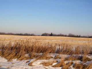 Photo 4: RR 214 Twp Rd 602: Rural Thorhild County Rural Land/Vacant Lot for sale : MLS®# E4224562