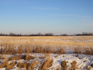 Photo 1: RR 214 Twp Rd 602: Rural Thorhild County Rural Land/Vacant Lot for sale : MLS®# E4224562
