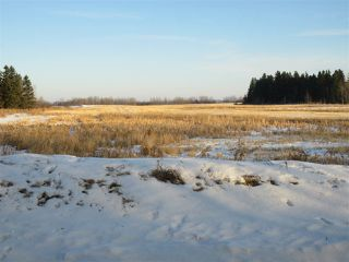 Photo 5: RR 214 Twp Rd 602: Rural Thorhild County Rural Land/Vacant Lot for sale : MLS®# E4224562