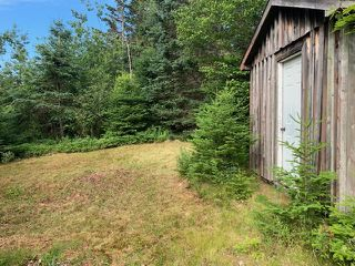 Photo 5: 7813 209 Highway in Brookville: 102S-South Of Hwy 104, Parrsboro and area Residential for sale (Northern Region)  : MLS®# 202013380