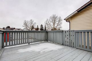 Photo 45: 64 Whitmire Road NE in Calgary: Whitehorn Detached for sale : MLS®# A1055737