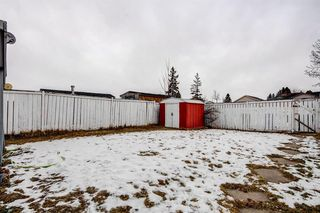 Photo 48: 64 Whitmire Road NE in Calgary: Whitehorn Detached for sale : MLS®# A1055737
