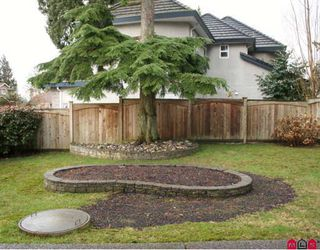 """Photo 15: 21036 45A in Langley: Brookswood Langley House for sale in """"Cedar Ridge"""" : MLS®# F2904316"""