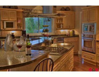 Photo 3: 29755 GLENGARRY Avenue in Abbotsford: Bradner House for sale : MLS®# F2908007