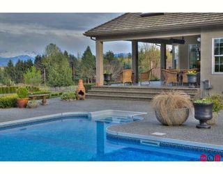Photo 4: 29755 GLENGARRY Avenue in Abbotsford: Bradner House for sale : MLS®# F2908007