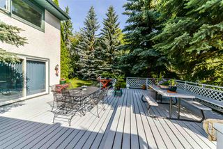 Photo 18: 56 QUESNELL Road in Edmonton: Zone 22 House for sale : MLS®# E4167812