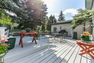 Photo 19: 56 QUESNELL Road in Edmonton: Zone 22 House for sale : MLS®# E4167812