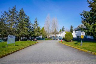 "Photo 26: 103 13730 67 Avenue in Surrey: East Newton Townhouse for sale in ""Hyland Creek Estates"" : MLS®# R2447714"