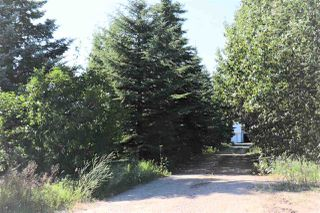 Photo 49: 117 MEADOW Crescent: Rural Sturgeon County House for sale : MLS®# E4209398