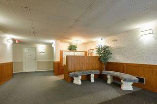 Photo 15: 114 22514 116 Avenue in Maple Ridge: East Central Condo for sale : MLS®# R2489606
