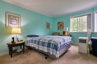 Photo 20: 114 22514 116 Avenue in Maple Ridge: East Central Condo for sale : MLS®# R2489606