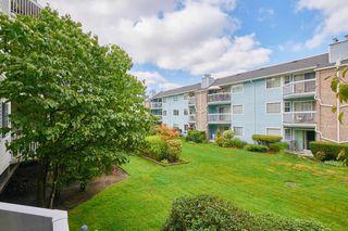 Photo 17: 114 22514 116 Avenue in Maple Ridge: East Central Condo for sale : MLS®# R2489606