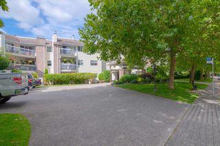 Photo 13: 114 22514 116 Avenue in Maple Ridge: East Central Condo for sale : MLS®# R2489606