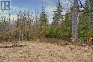 Photo 13: Lot 29 East Clifford Road in East Clifford: Vacant Land for sale : MLS®# 202024861
