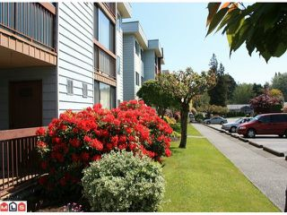 "Photo 1: 102 2279 MCCALLUM Road in Abbotsford: Central Abbotsford Condo for sale in ""ALAMEDA COURT"" : MLS®# F1012029"