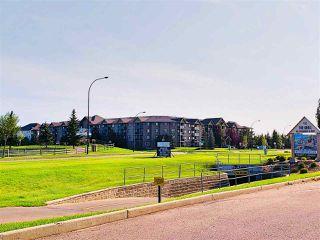 Photo 27: 203 279 SUDER GREENS Drive in Edmonton: Zone 58 Condo for sale : MLS®# E4168042