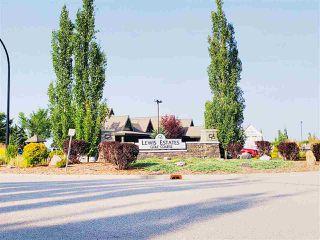 Photo 28: 203 279 SUDER GREENS Drive in Edmonton: Zone 58 Condo for sale : MLS®# E4168042