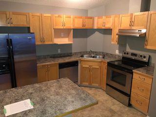 Photo 3: 411 5340 199 Street in Edmonton: Zone 58 Condo for sale : MLS®# E4184148
