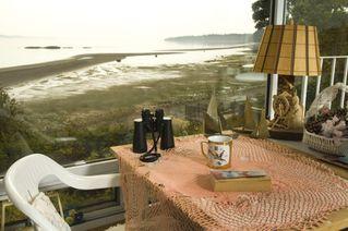 Photo 6: 4987 Cordova Bay Rd in VICTORIA: SE Cordova Bay House for sale (Saanich East)  : MLS®# 513041