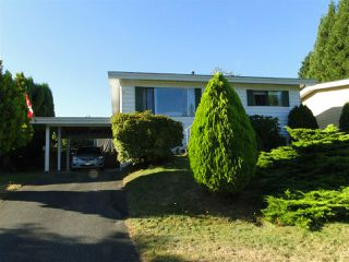 Photo 1: 33146 CAPRI Court in Abbotsford: Central Abbotsford House for sale : MLS®# R2494804